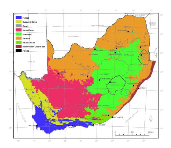 Vegetation of South Africa   Plantz Africa